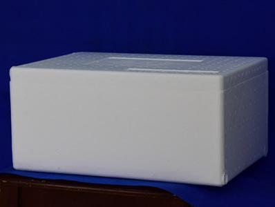 外贸出口食品专用箱