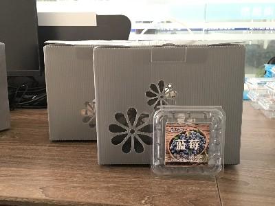 中空板蓝莓礼品盒
