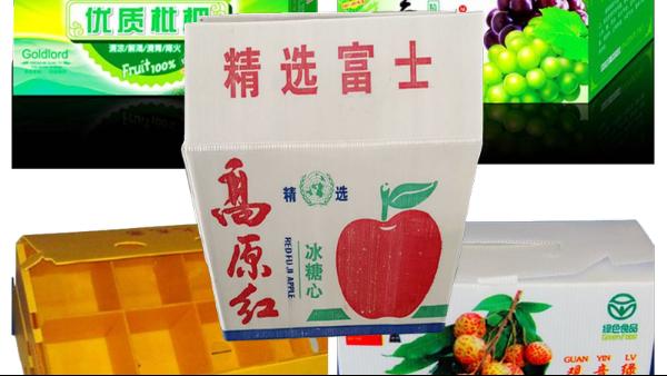 中空板包装果蔬水产运输过程保证腐烂漏水情况下不塌箱