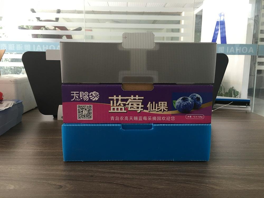 中空板折叠蓝莓箱