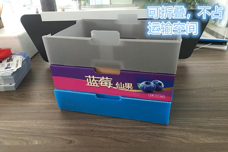 折叠中空板蓝莓箱