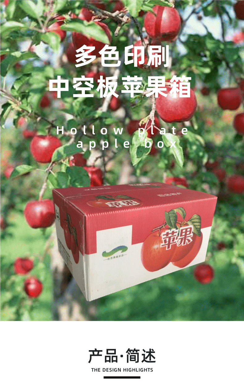 中空板苹果箱 (1)