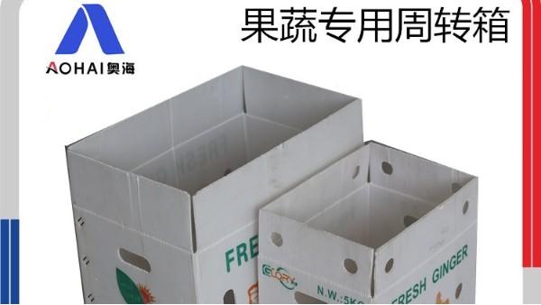 纸箱包装的时代变革者,纸箱式中空板箱